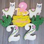 Cactus Llama Birthday